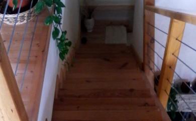 Borovi lépcső